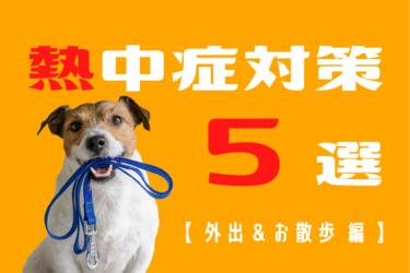 犬の熱中症対策 5選【 外出や散歩中の予防編 】