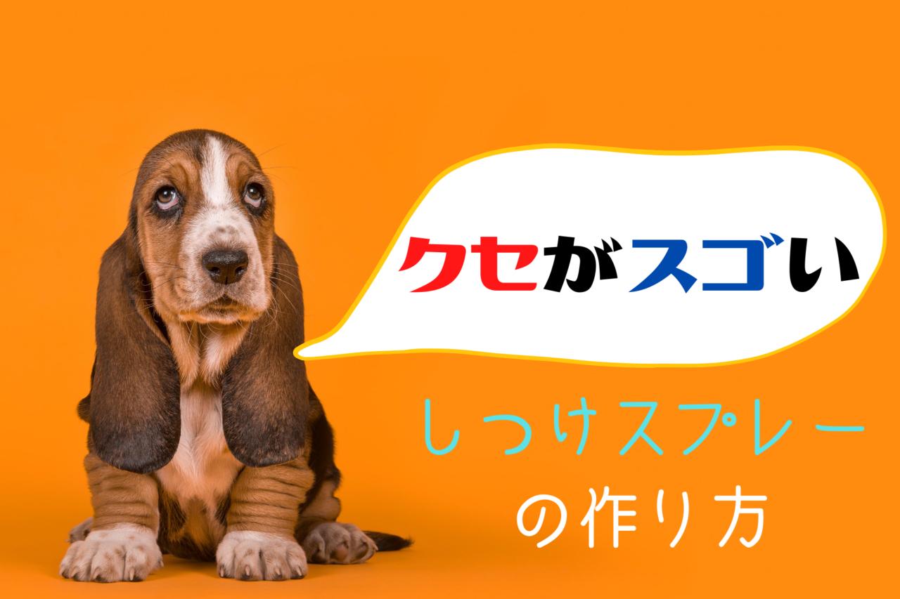犬の噛み癖。食糞・マーキングを防止するためのしつけスプレーの作り方と注意点