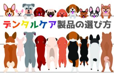 【 犬のデンタルケア 】歯磨きガム・歯磨きおもちゃ・歯磨きシートなどの選び方