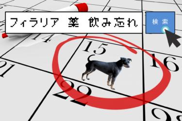 犬のフィラリア症| 予防薬と飲み忘れた時の対処法