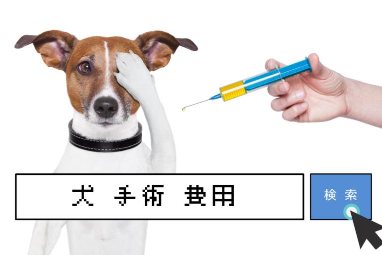 犬の外科手術費用の相場 去勢避妊