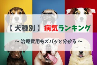 犬種別かかりやすい病気ランキング|犬種別の特徴や治療費用もズバッとわかります