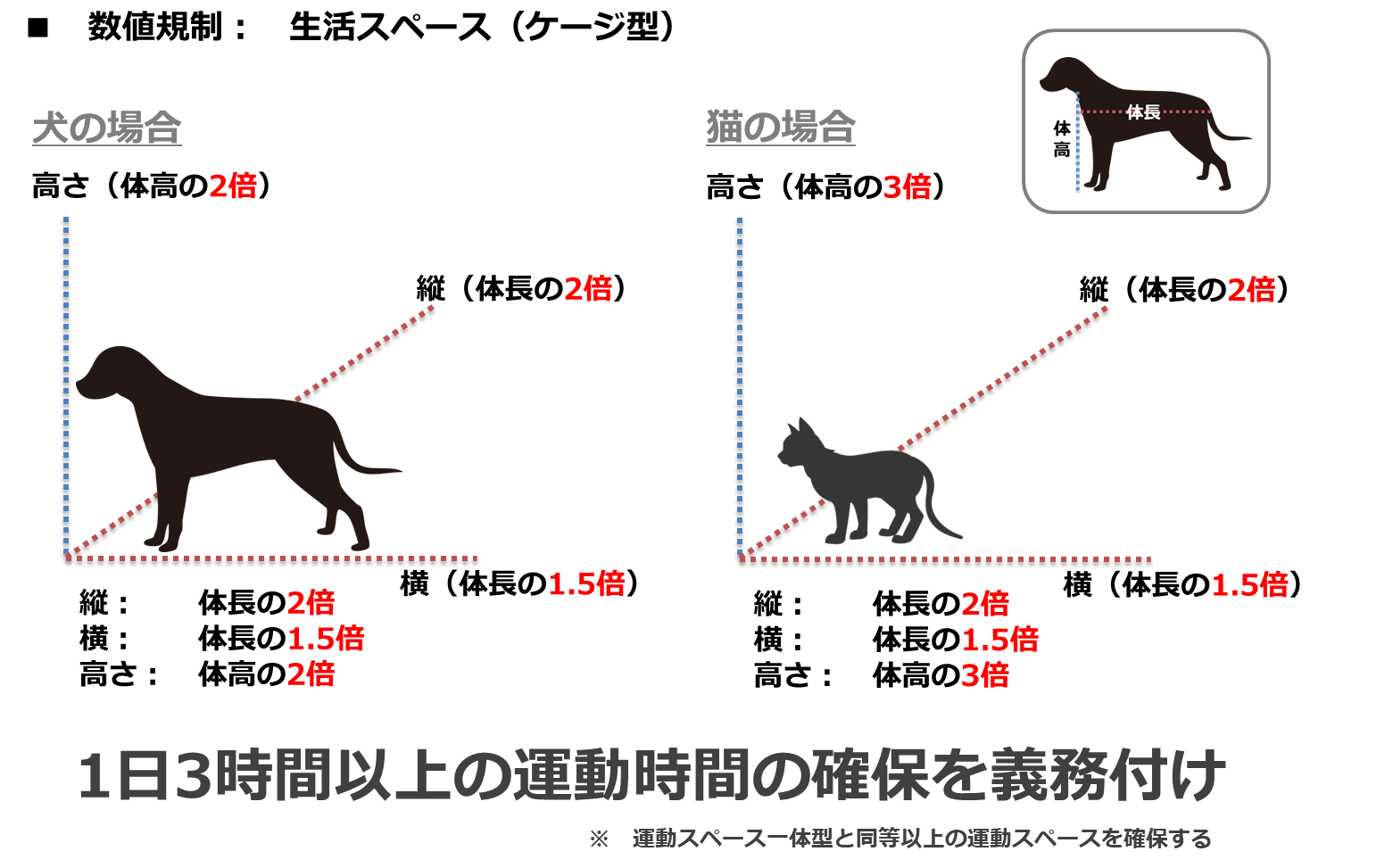 数値規制(飼育環境、ケージ型