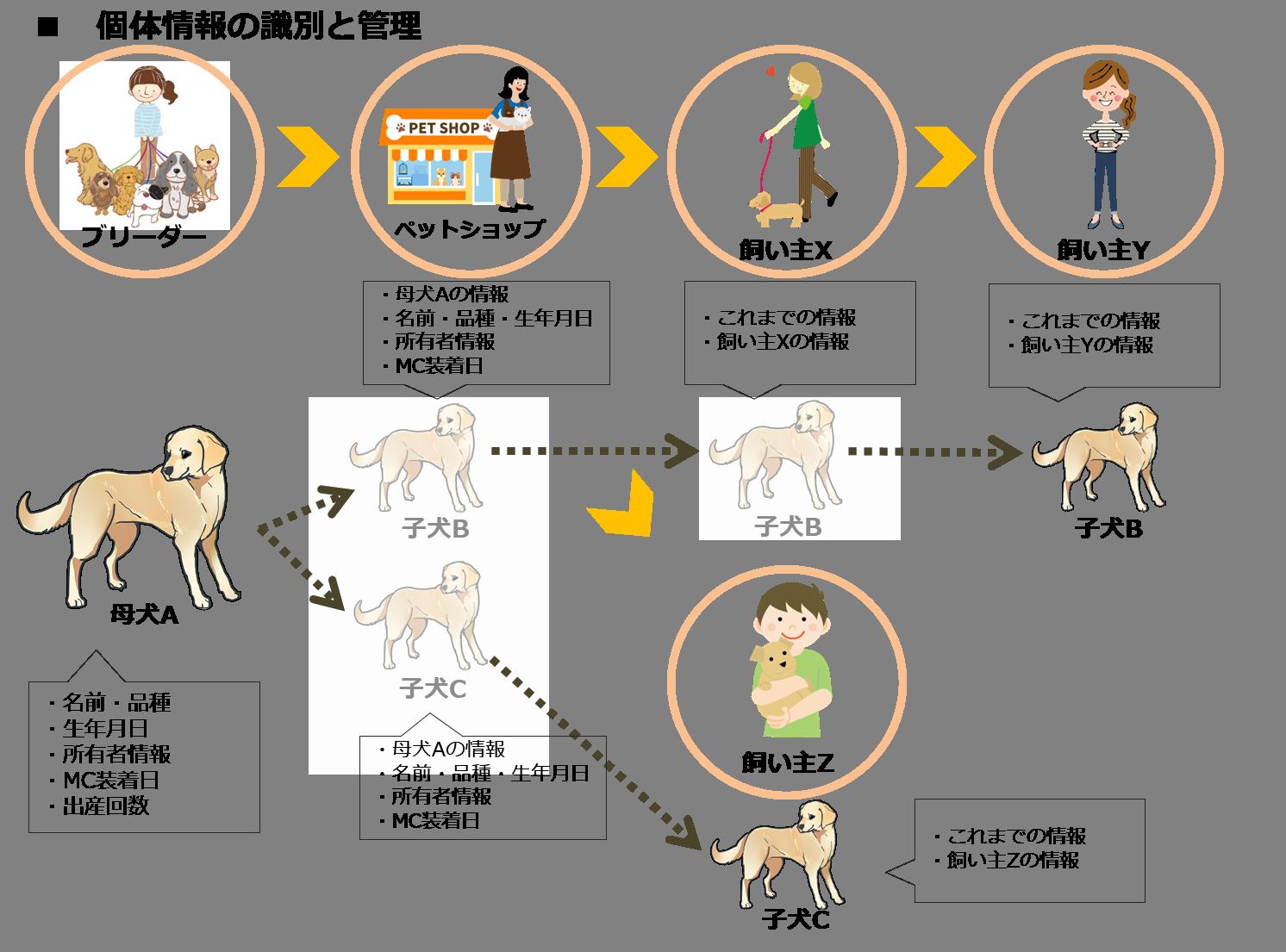 マイクロチップ、トレーサビリティ、犬・猫、動物愛護法改正、