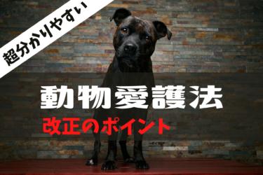 動物愛護法改正(動物の愛護及び管理に関する法律)2020改正内容、数値規制、8週齢規制