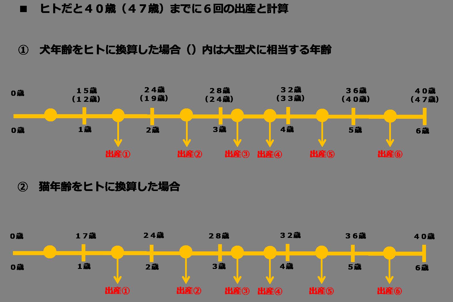 出産回数(6年6回、数値規制