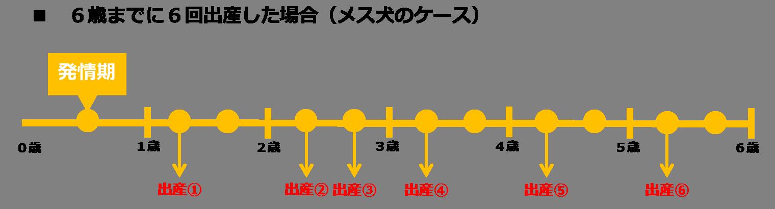 数値規制(出産回数、出産年齢)