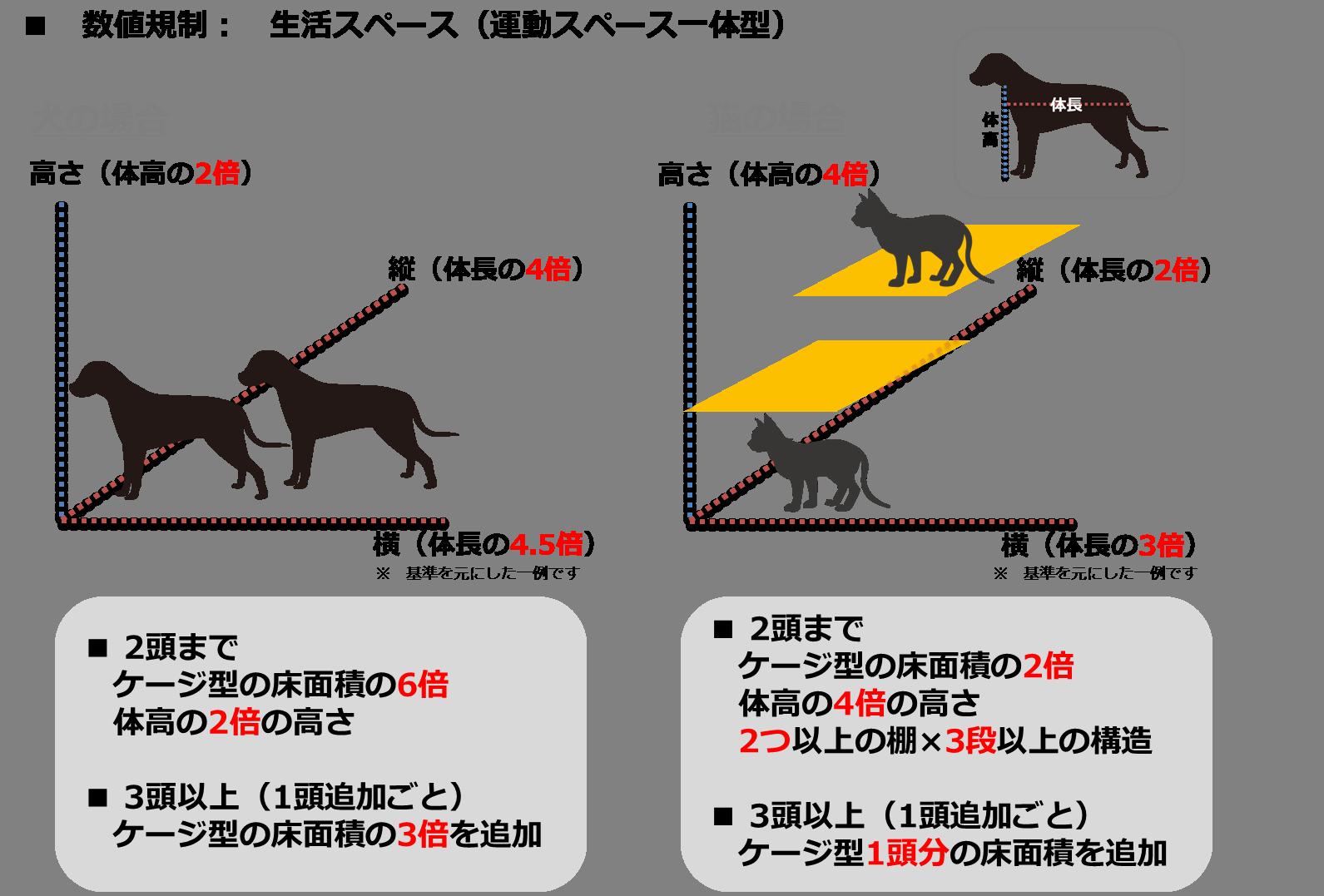 数値規制(ケージ型