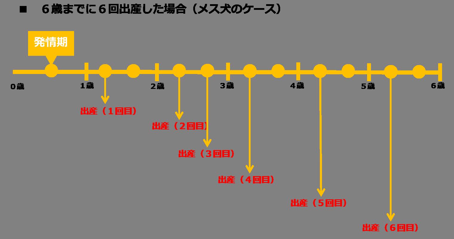 数値規制(メス犬は6歳で6回まで繁殖回数可能
