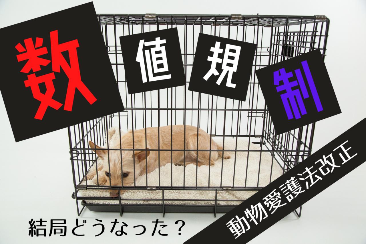 数値規制動物愛護法