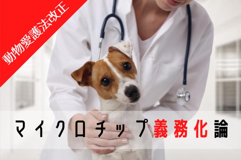 犬・猫のマイクロチップ装着の義務化、動物愛護法改正2019年、2022年、