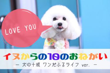 【 犬の十戒 特別編 】犬たちから飼い主への10のお願い