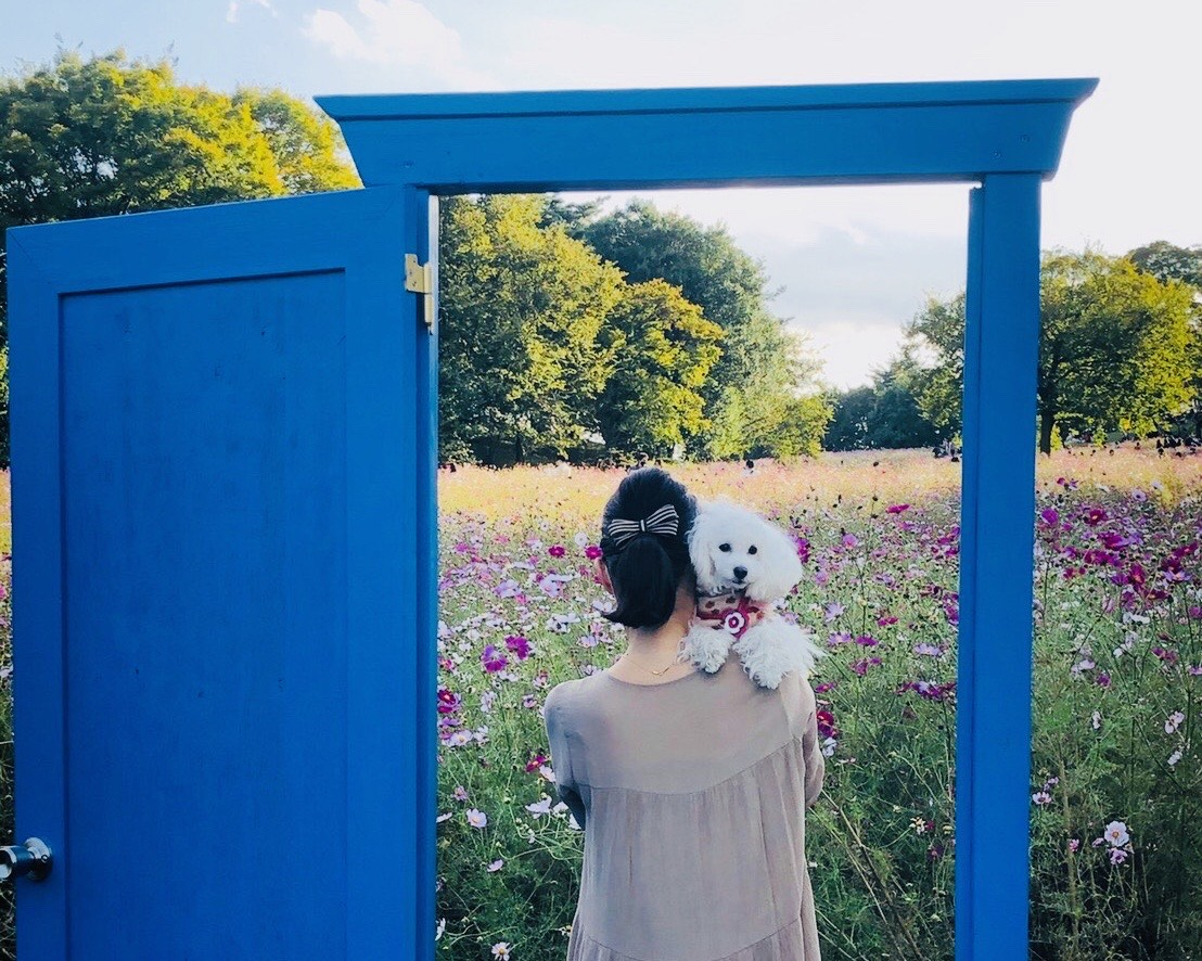 国営昭和記念公園どこでもドア