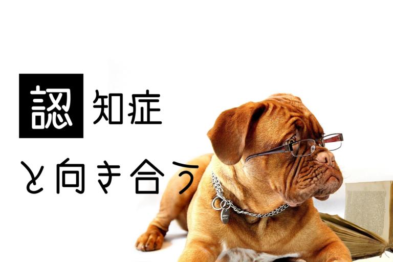 犬の認知症、アルツハイマー、痴呆、ボケ、治った、安楽死、治療方法、予防方法