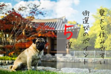 愛犬と住みやすい街選びのポイント5選