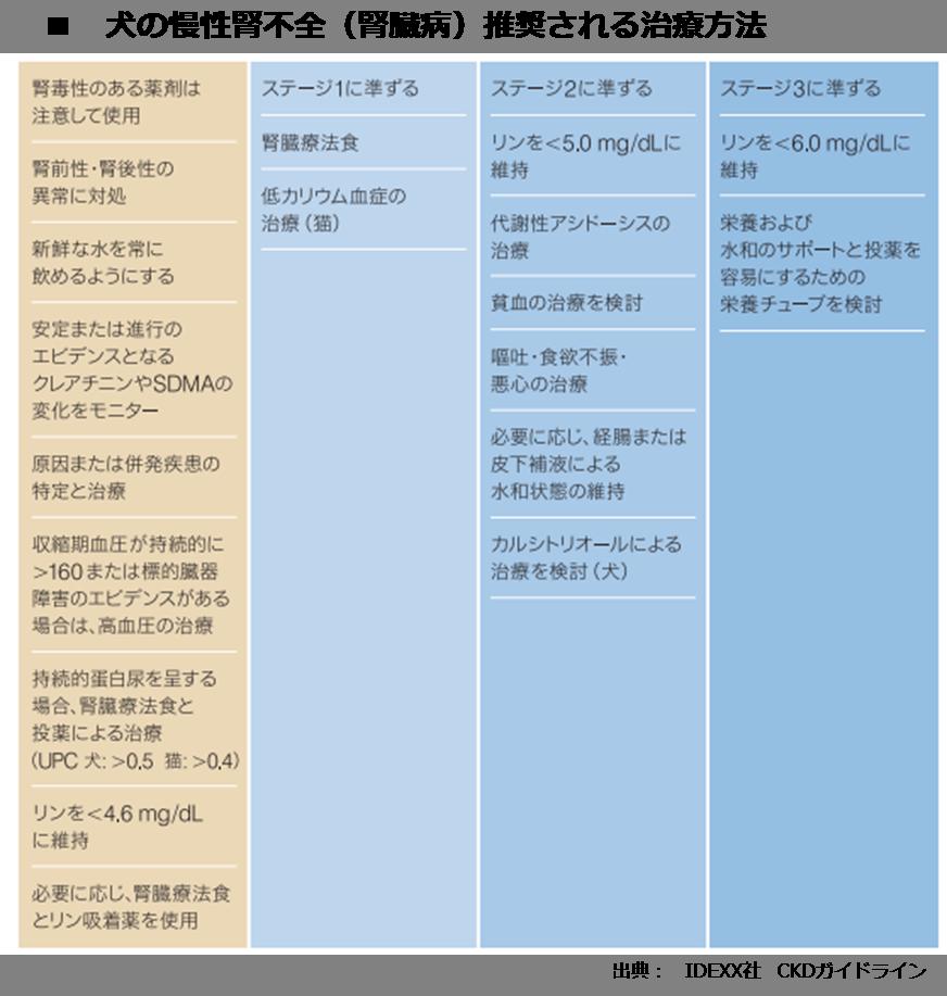 犬の慢性腎不全(腎臓病)のステージ、治療方法