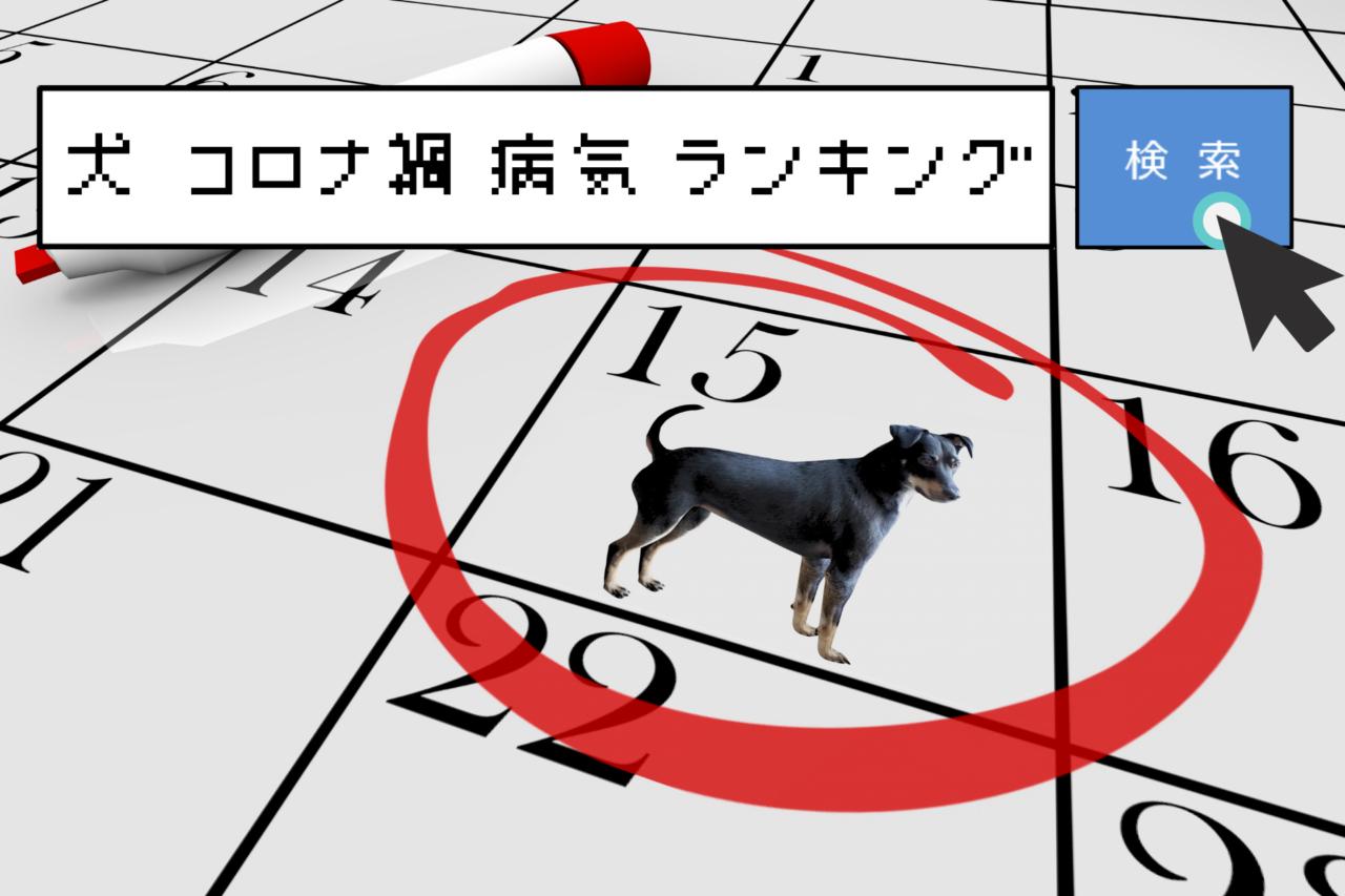 犬のコロナ禍病気ランキング