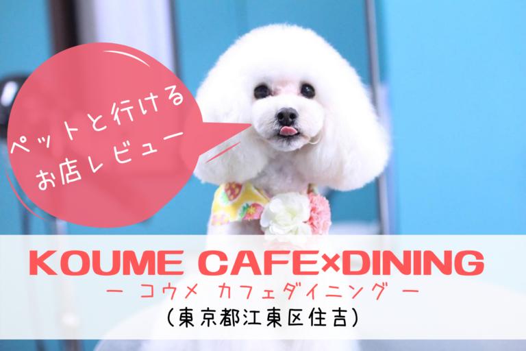 KOUME CAFE×DINING (コウメ カフェダイニング)、ドッグカフェ、ペットと行ける、ペット同伴可能、東京都江東区、住吉、猿江、錦糸町