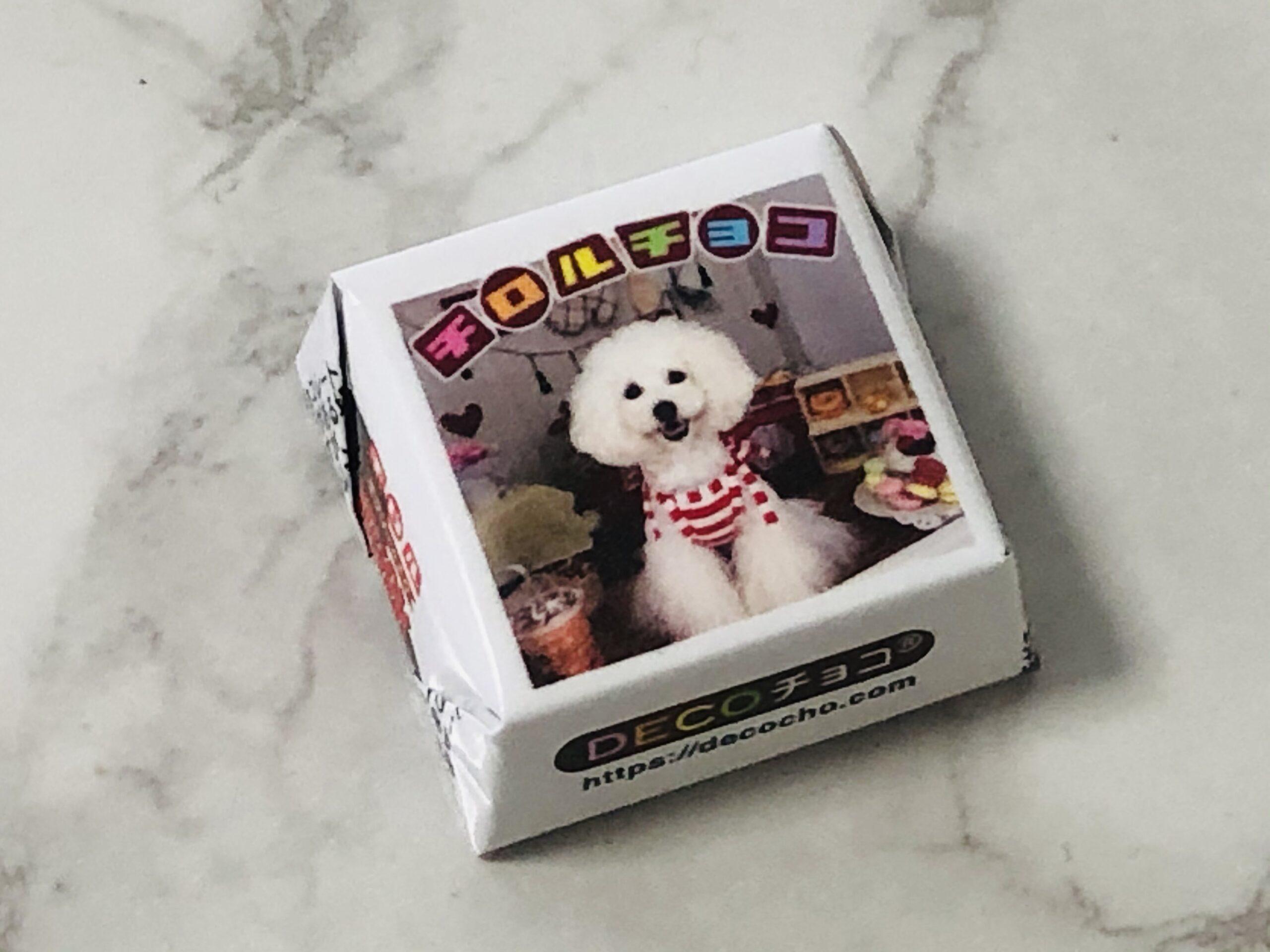 チロルチョコ、DECOチョコ、デコチョコ、愛犬、ペットをチョコレート、デコレーション、