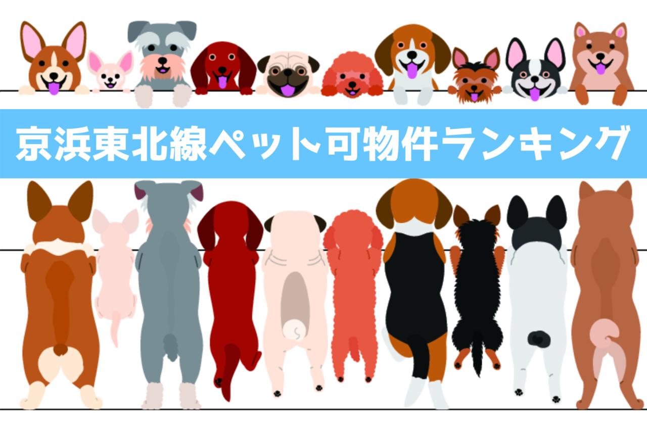 京浜東北線、ペット飼育可能、賃貸マンション、ランキング、東京23区、横浜市、山手線、総武線