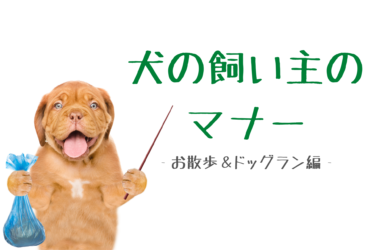 犬の飼い主のマナー|気を付けたいポイント(お散歩&ドッグラン編)