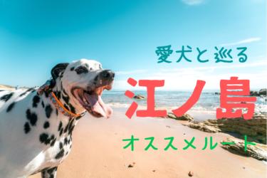 愛犬と巡る江ノ島オススメ観光ルート|ペット同伴可能なお店がたくさん