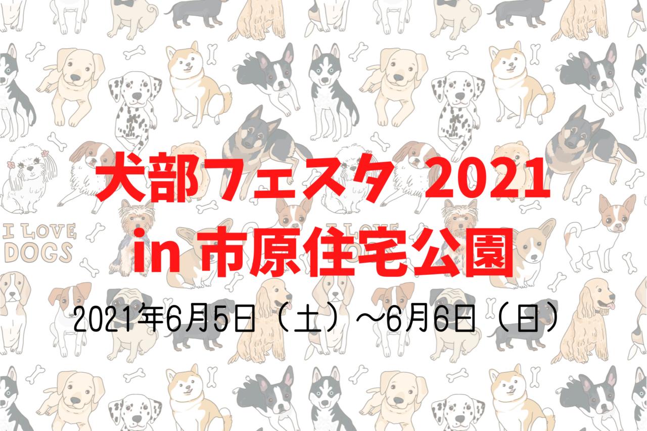 千葉県市原市更級、犬、ペット、イベント犬部フェスタ2021in市原住宅公園