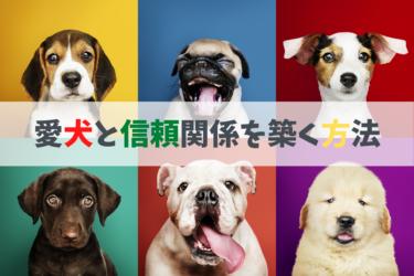愛犬と信頼関係を築く方法、コミュニケーションの取り方、ペット、