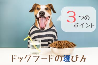 犬、食べ物、ドッグフード、選び方