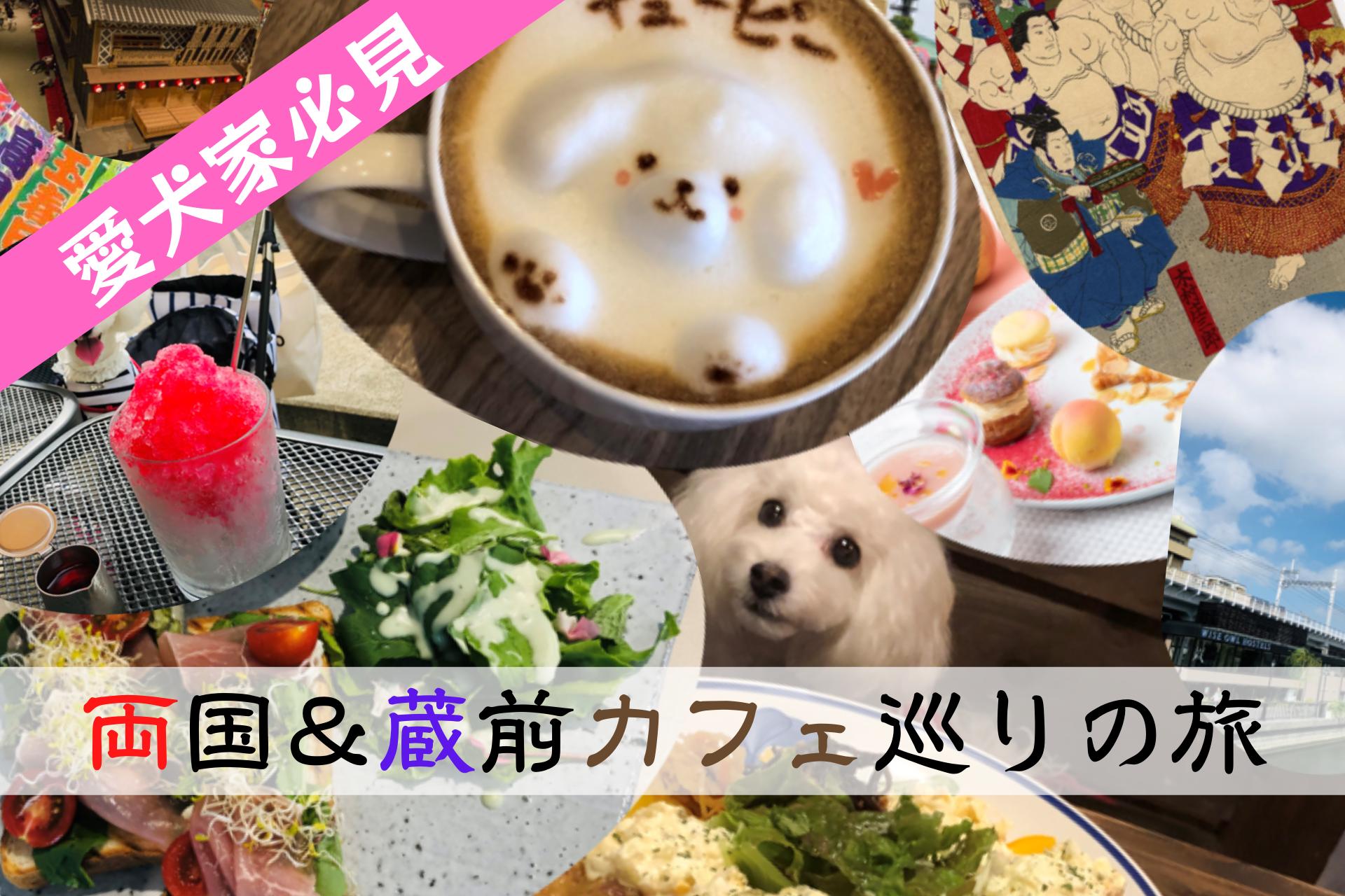 両国、蔵前、台東区、墨田区、ペット可、ドッグカフェ、レストラン、ペット宿泊可能なホテル、東京都、ワンコOK、犬連れ