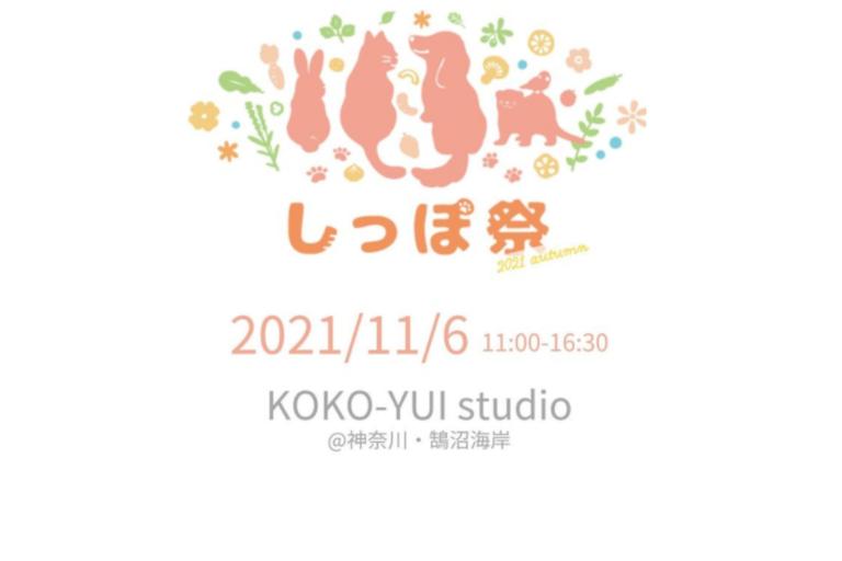 しっぽ祭2021Autumn、KOKO-YUI studio(旧:鵠沼海岸Marks)、ペットと行ける、犬と行ける2021、イベント神奈川県藤沢市